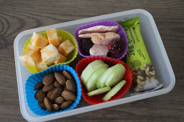 Easy School Lunch, Picnic lunch