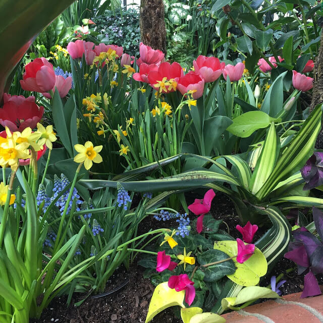The Biltmore gardens, Asheville, NC