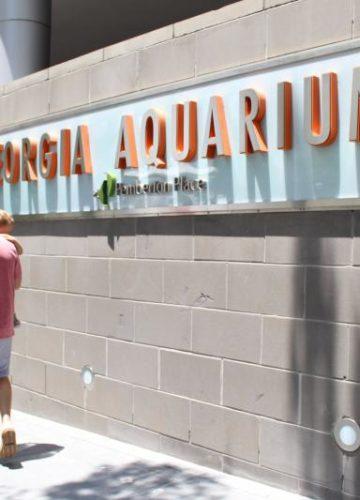 Weekend Getaway: Georgia Aquarium