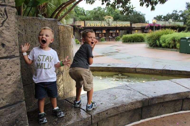 Disney World with Children: What Rides, What to Pack, Fastpass, Restaurants, Hotel