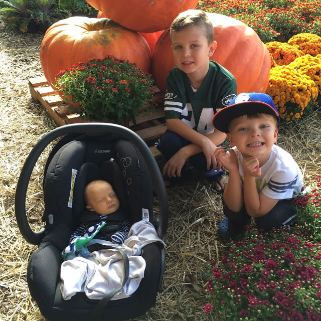 Fall Activities in Charlotte, NC