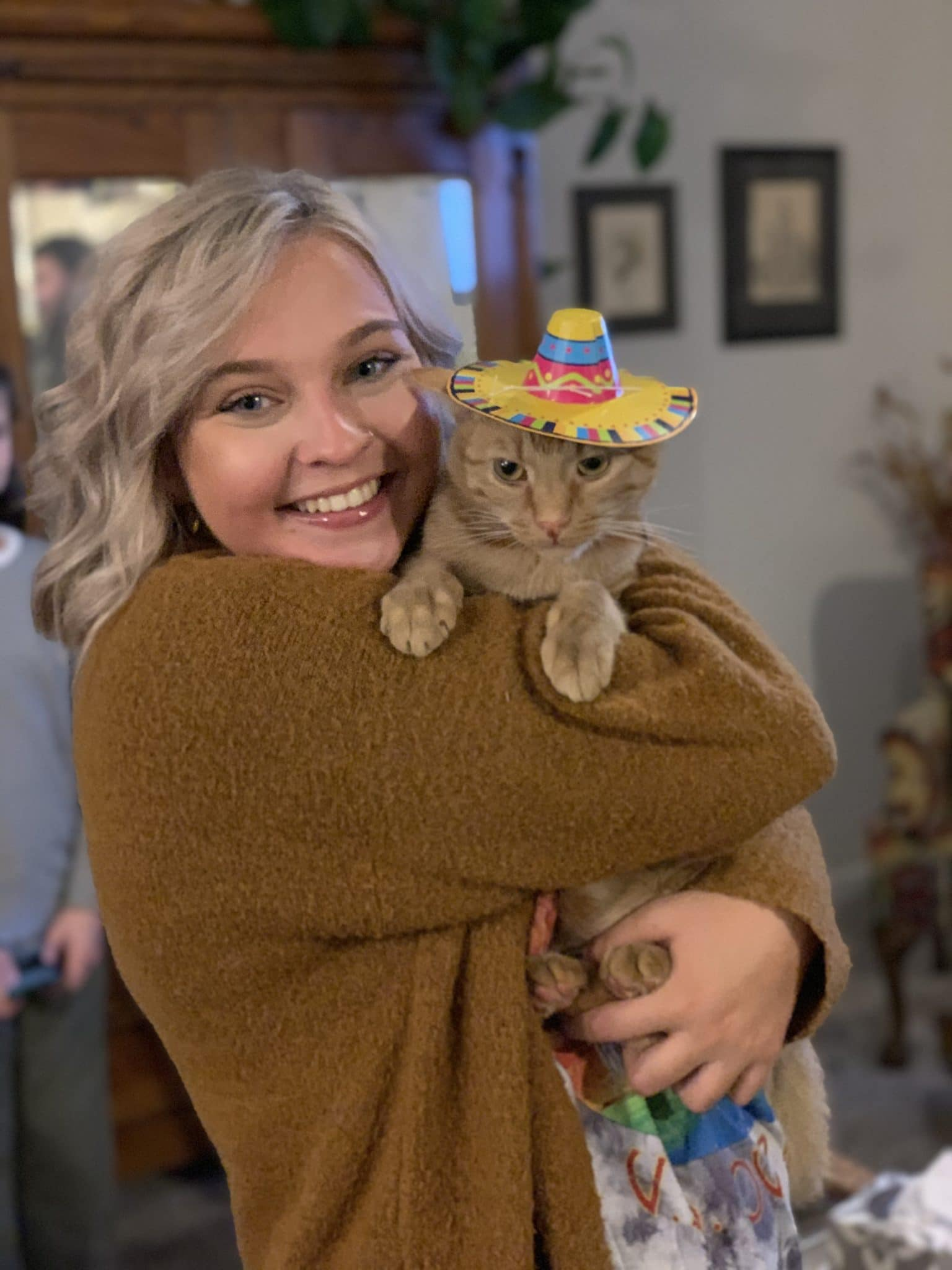 Cat in Sombrero, Cat Birthday Party