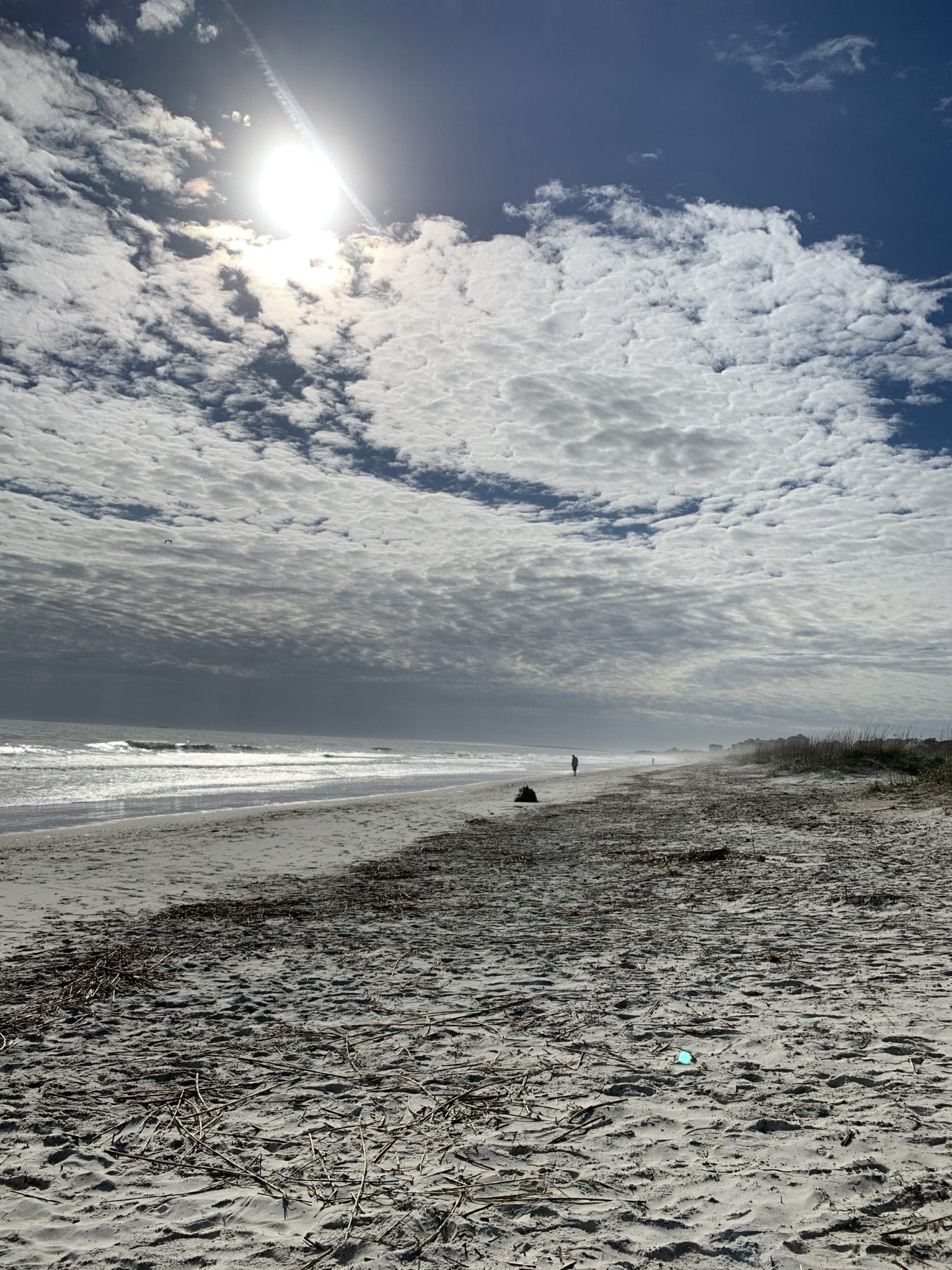 Amelia Island Vacation, Stilettos and Diapers, Molly Wey