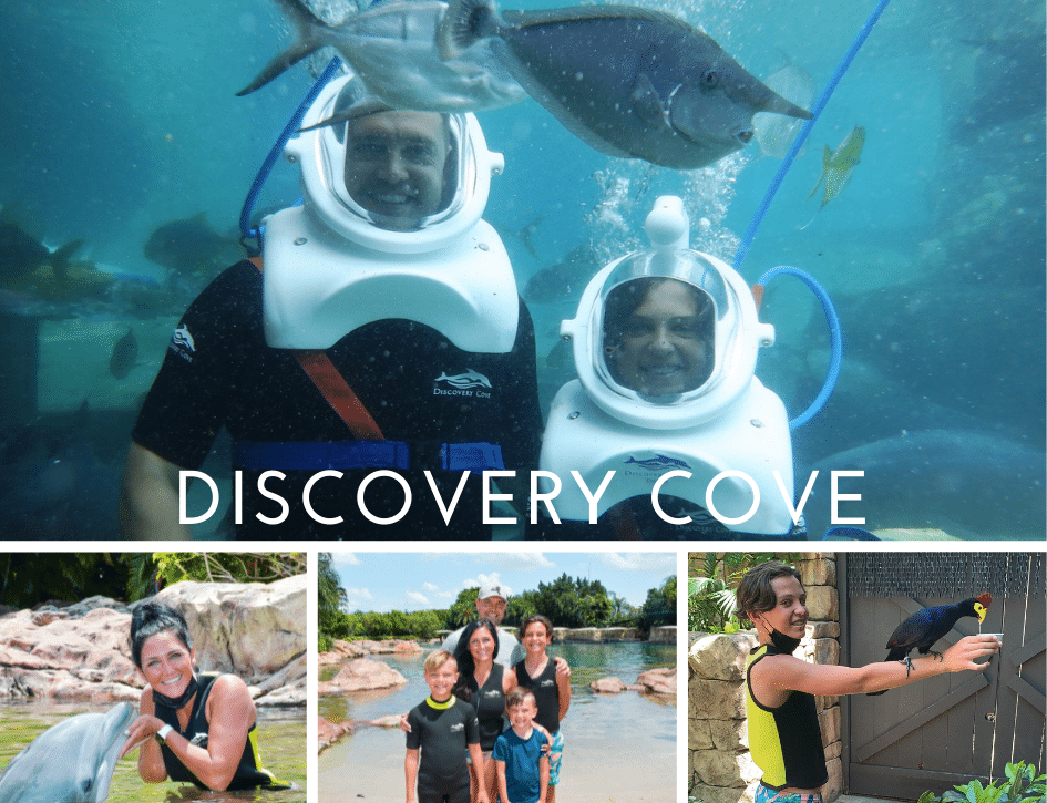 Discovery Cove, Experience Kissimmee, Stilettos and Diapers