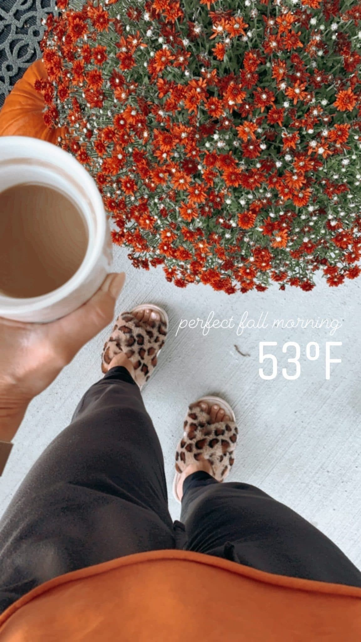 Cozy leopard slippers, fall styles, stilettos and diapers